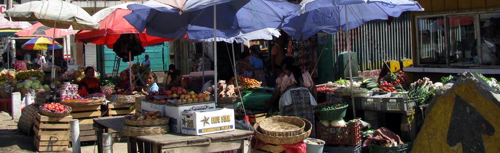Cantel-Markt